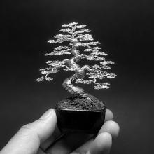 Скульптура бонсай: деревья из проволоки