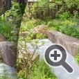 Выставка цветов и ландшафтного дизайна в Челси. The M&G Garden. Ландшафтный дизайнер: Клив Вест