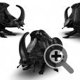 Кресло в форме жука - носорога
